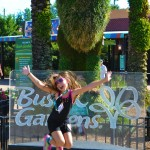 The Return of Busch Gardens' Summer Nights 2015
