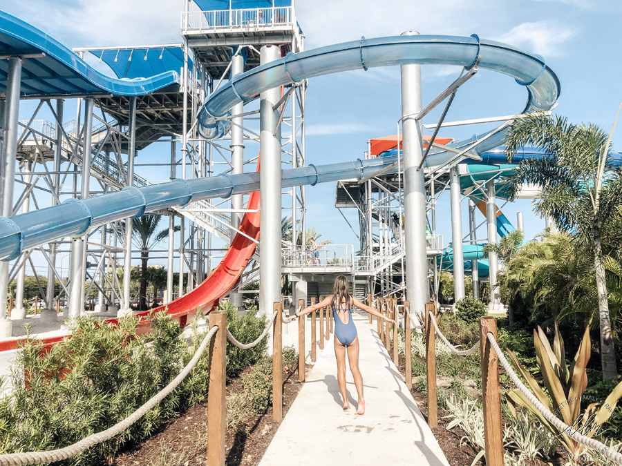 10 Experiences at Island H2O Live! Water Park